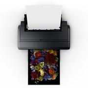Опция рулонной печати в подарок для Epson SC-P800