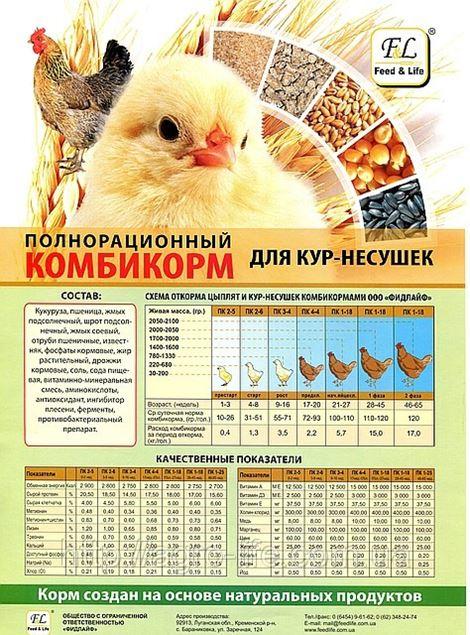 Комбикорм для куриц своими руками