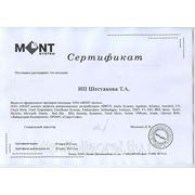 Сертификат партнера МОНТ систем