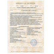 anexa_la_licenta.jpg