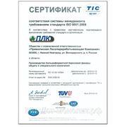 Большеформатная березовая фанера Сертификат TIC