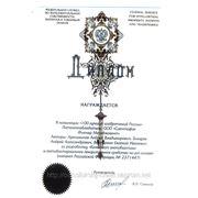 """Диплом """"100 лучших изобретений России"""""""