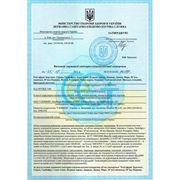 Сертификат соответствия. Масла косметические