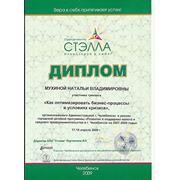 Диплом участника тренинга «Как оптимизировать бизнес-процессы в условиях кризиса», организованного Администрацией г. Челябинска в рамках городской целевой программы «Развитие и поддержка малого и среднего предпринимательства» 17-18 апреля 2009 г.