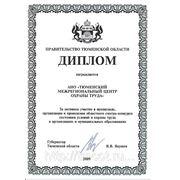 Диплом правительства