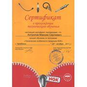 Сертификат NGK