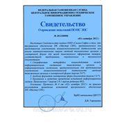 Свидетельство об испытаниях «Мастер СВХ» для целей таможенного оформления товаров.