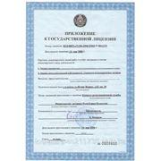 Приложение к государственной лицензии