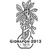 Логотип компании Gidrapon2013 (Тольятти)