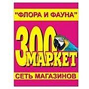 """Зоомаркет товары для животных """"Флора и Фауна"""""""