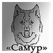 "Логотип компании ""Самур"" (Красноярск)"