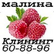 Клининговая компания «МАЛИНА»