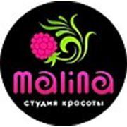 Логотип компании Студия Красоты «Malina» (Кострома)