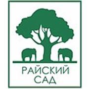 """Студия флористического дизайна """"Райский сад"""""""