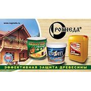 "Логотип компании ТОО ""Рогнеда Казахстан"" (Нур-Султан)"