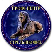 Профи-центр Стрельниковых, ЧП
