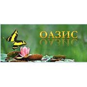 «ОАЗИС»