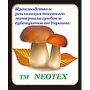 Логотип компании Neotex (Конотоп)