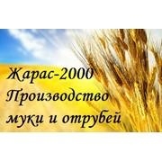 Жарас-2000, ТОО