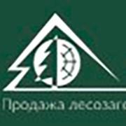 Лесотехника
