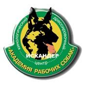Искандер (Центр дрессировки), ООО
