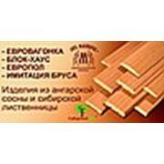 Логотип компании ООО ТД «Сибирский лес» (Новосибирск)