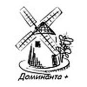 """ООО """"Доминанта+"""""""