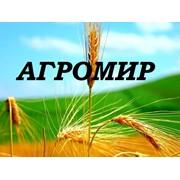 Агромир-Кокше
