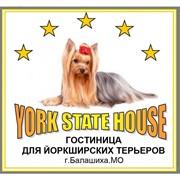 Зоогостиница York State House, ООО