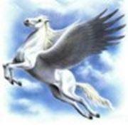«Железный Век»