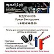 """Логотип компании Интернет магазин """"Пульт54"""" (Новосибирск)"""