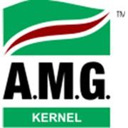 SC AMG Kernel, SRL