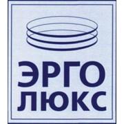 ГК НПП Эрго-Люкс, ООО