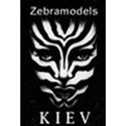 Логотип компании Модельное агентство Киева Zebra Models (Киев)