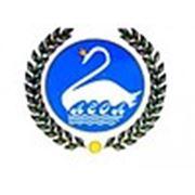 Логотип компании ФОП Волошина С.В. (Одесса)