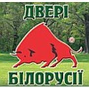 Логотип компании ЧП Олейник (Новая Каховка)