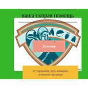 """Служба дезинсекции и дератизации """"Дезозавр"""""""