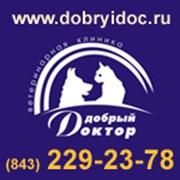 Добрый доктор (Ветеринарная клиника), НП