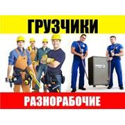 Логотип компании Грузчики Ростов-на-Дону (Ростов-на-Дону)
