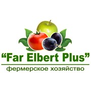 Far Elbert Plus, Ф/Х