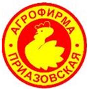 Агрофирма Приазовская, ОАО