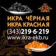 Ikra-Ekb
