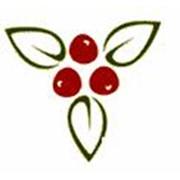 Логотип компании Ягода, ООО (Петрозаводск)