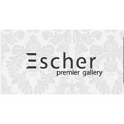 Галерея современного искусства Escher, ЧП