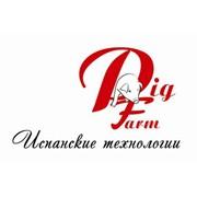 Пиг Фарм, ООО