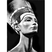 Учебный центр Нефертити