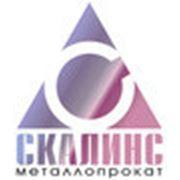 Логотип компании СКАЛИНС (Москва)