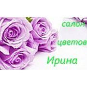 Салон цветов «Ирина»