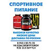 SPKSPORT интернет-магазин спортивного питания