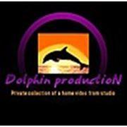 "Видеостудия ""Dolphin Production Inc"""